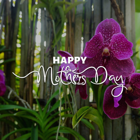 mothers-day-600